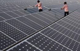 Năng lượng sạch - Chìa khóa phát triển kinh tế của Ấn Độ