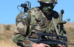 NATO tăng gấp đôi quy mô lực lượng phản ứng nhanh