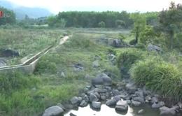 Miền núi Khánh Hòa thiếu nước sinh hoạt