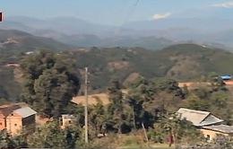 Nạn buôn bán thận hoành hành tại Nepal