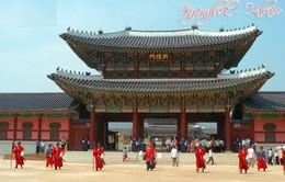 Lo dịch MERS, khách Việt hủy tour đến Hàn Quốc