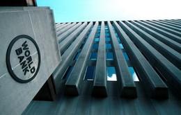Chủ tịch Ngân hàng Thế giới tuyên bố sẵn sàng hợp tác với AIIB