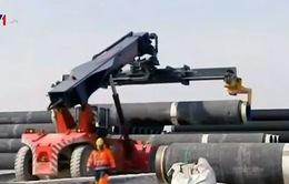 Nga ngừng dự án đường ống khí gas do căng thẳng với Thổ Nhĩ Kỳ