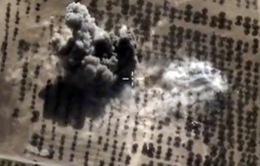 Nga tiêu diệt 14 tay súng có liên hệ với IS tại Bắc Caucasus