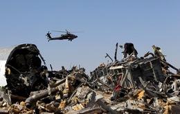 Tổng thống Nga lên tiếng về vụ tai nạn máy bay