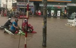Bình Dương: Ngã tư miếu Ông Cù ngập nặng, đường biến thành sông