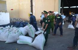 Phát hiện lượng lớn ngà voi, vảy tê tê nhập lậu vào Việt Nam