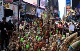 Mỹ: Tiêu hủy hơn 1 tấn ngà voi tại Quảng trường Thời đại