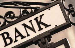 5/33 ngân hàng có sở hữu vượt mức cho phép 5%