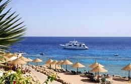 Ngành du lịch Ai Cập bị khốn đốn sau vụ máy bay Nga rơi ở Sinai