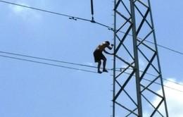 Thanh niên nghi ngáo đá leo lên cột điện cao thế
