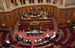 Hiệp định PCA Việt Nam - EU được Thượng viện Pháp phê chuẩn