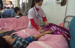 Hơn 100 công nhân ngộ độc ở Hà Nội: Nghi ngờ do cá trứng