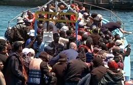 Đức cam kết hỗ trợ đối phó làn sóng nhập cư