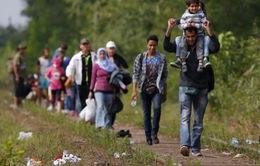 Đan Mạch thông báo hạn chế người di cư