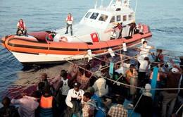 Italy: Lực lượng bảo vệ bờ biển giải cứu gần3.700 người di cư trái phép
