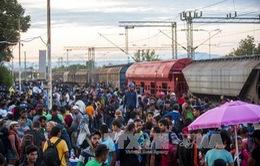 Hàng nghìn người di cư đổ về các cửa ngõ châu Âu