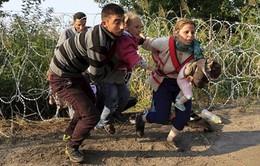 Mỹ sẽ tiếp nhận 10.000 người tị nạn Syria