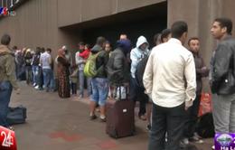 Nhiều người nhập cư bất hợp pháp xin quy chế tị nạn tại Bỉ
