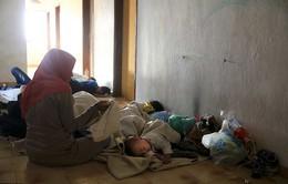 Hy Lạp dùng nhà thi đấu làm chỗ ngủ cho người di cư