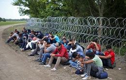 EU cân nhắc tạm ngừng Hiệp ước Schengen