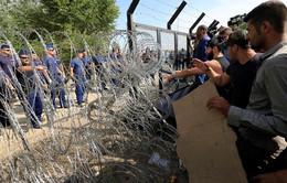 Slovenia kêu gọi Liên minh châu Âu giúp đỡ về vấn đề người di cư