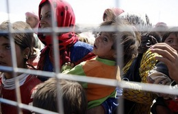 2014 – Năm khủng hoảng về người tị nạn