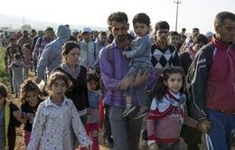 Mỹ từ chối tiếp nhận người tị nạn