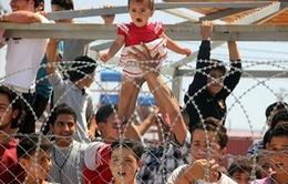 Anh hỗ trợ người tị nạn từ Syria