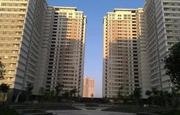 Cưỡng chế chủ đầu tư không bàn giao phí bảo trì chung cư