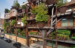 Ấn tượng tòa chung cư với 150 cây xanh bao quanh