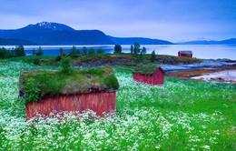Những căn nhà mang vẻ đẹp cổ tích ở Na Uy