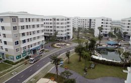 Hà Nội: Khẩn trương cấp sổ đỏ cho nhà ở xã hội