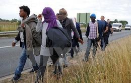 EU đề xuất hỗ trợ Anh, Pháp đối phó khủng hoảng nhập cư