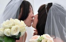 Nhật Bản lần đầu tiên cấp chứng nhận kết hôn đồng tính