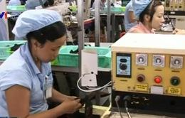 25% DN Nhật chọn Việt Nam sau khi rời Trung Quốc