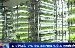 Xu hướng đầu tư vào nông nghiệp công nghệ cao tại Nhật Bản