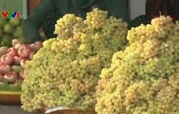 Nho nhái mác Ninh Thuận tràn lan trên thị trường