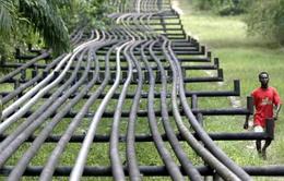 Kinh tế Nigieria - Nạn nhân của giá dầu giảm