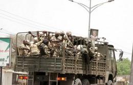 Nigeria và các nước khu vực họp bàn về thành lập lực lượng mới chống Boko Haram