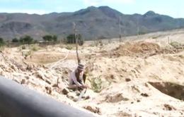 Người dân Ninh Thuận dồn sức chống chọi nắng hạn