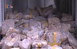 Hà Nội: Thu giữ hơn 1 tấn nội tạng động vật không rõ nguồn gốc