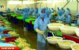 Xu hướng DN đầu tư vào nông nghiệp