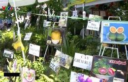 Chợ phiên nông sản - Nơi quảng bá sản phẩm nông nghiệp