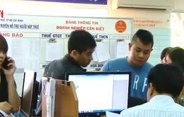 Hà Nội: 175 đơn vị đã nộp thuế sau khi bị công khai danh sách nợ
