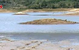 Nước không còn là tài nguyên vô hạn tại Việt Nam