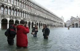 Nhiều thành phố lớn có nguy cơ bị nhấn chìm do nước biển dâng