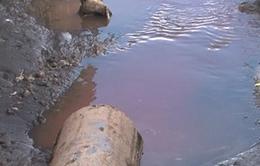 Hậu Giang: Phát hiện doanh nghiệp xả nước thải chưa qua xử lý