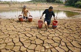 ĐBSCL thiếu nước ngọt trầm trọng
