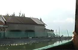 Người dân ồ ạt xây hồ nuôi tôm trái phép